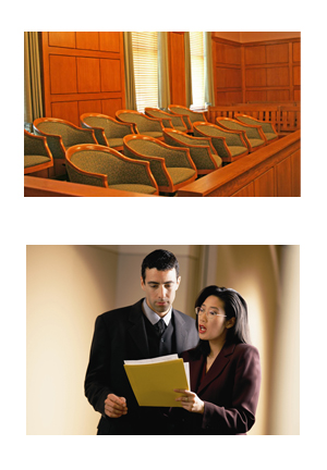 Expert Witness Preparation